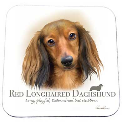 Howard Robinson coaster - Dachshund design
